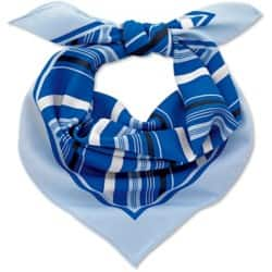 Womens Multi blue stripe scarf Size: One size Blue