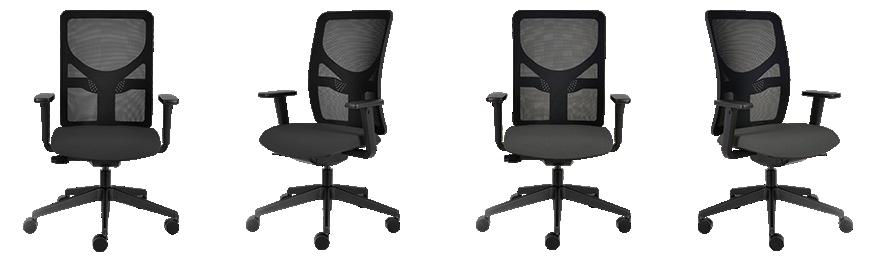 Ergonomic Office Chair IMAGE 100